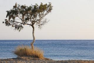 Hotel Kalypso Cretan Village Landschaft