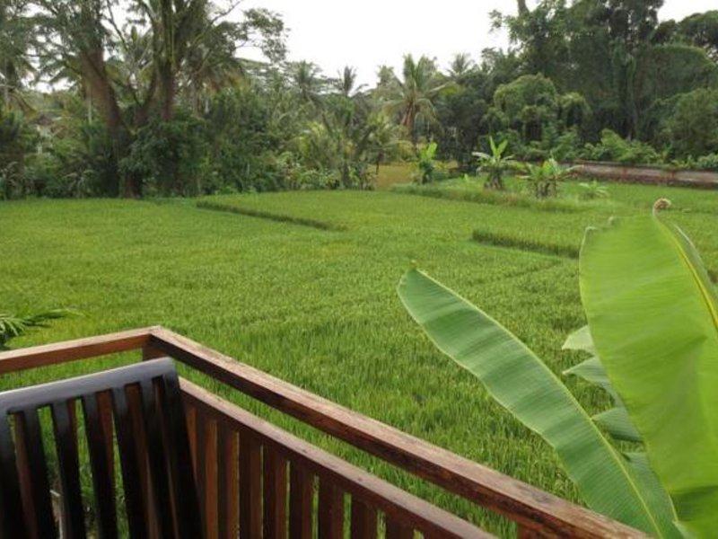 Anini Raka Resort & Spa Garten