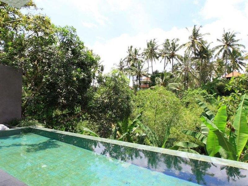 Aria Villas Ubud Pool