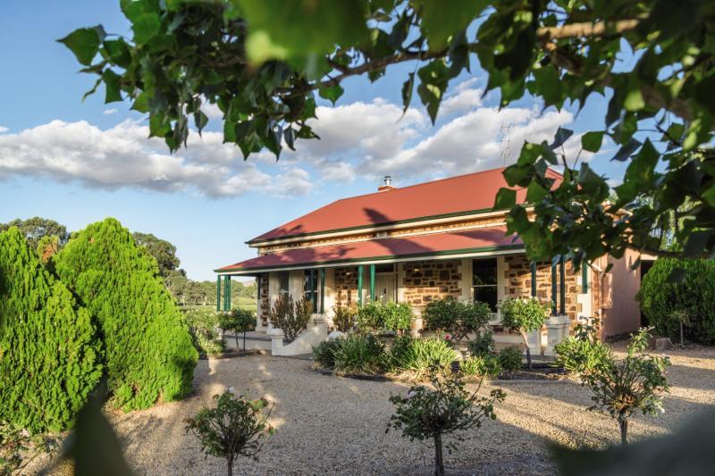Barossa Shiraz Estate Garten