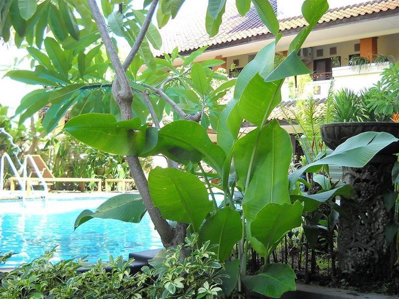 Bali Sorgawi Hotel Pool