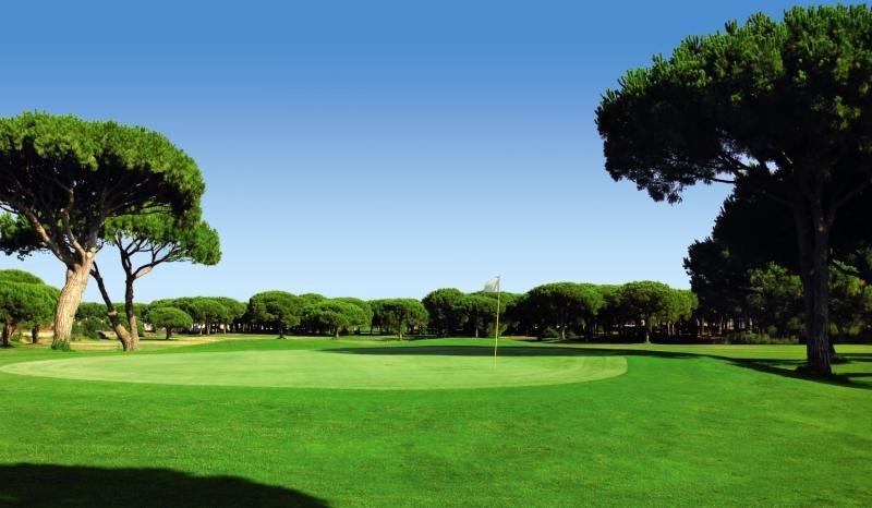 Vincci Costa Golf Sport und Freizeit