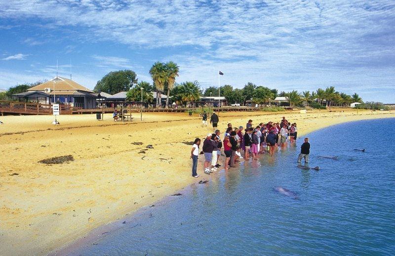 RAC Monkey Mia Dolphin Resort Strand