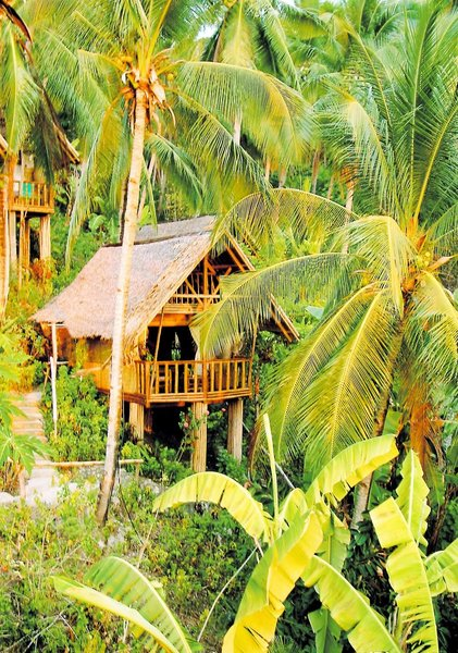 Coco Beach Island Resort Garten
