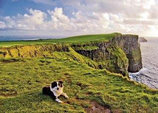 Irland – Rundreise: Das Beste der Grünen Insel
